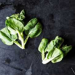 Tatsoi is the New Spinach (Haven't You Heard?)