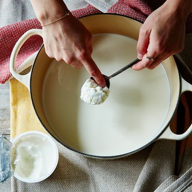 The Beginner's Guide to Making Impossibly Creamy Yogurt