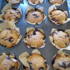 Blueberry and Flax Munchkin Muffins