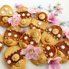 Paleo Easter Egg Cookies