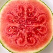 82d9af41 fd53 43d2 ae69 2bedf2db43c2  watermelon