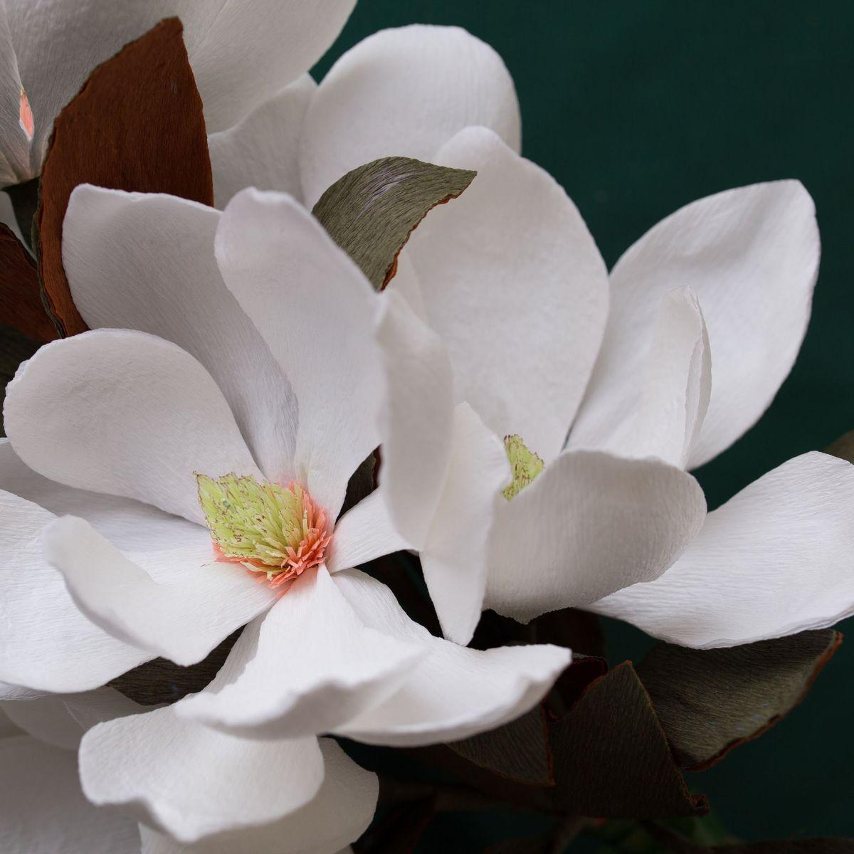 Magnolia paper flower tutorial from flowersmith by jennifer tran maxwellsz