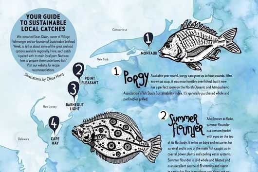 The Old Bait and Switch: How to Use Local, Sustainable Fish Instead of Non-Local Ones