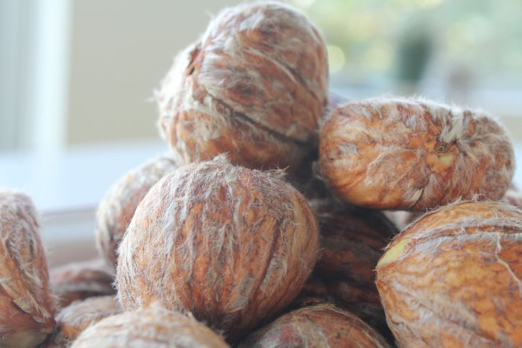 """Chestnut Preserves from the """"Little Forest"""""""