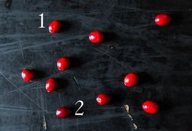 Ad1c6379 6675 47c7 8a93 80e64f23f63a  cranberries 1