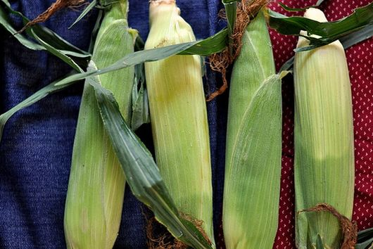 Effortless Roasted Corn