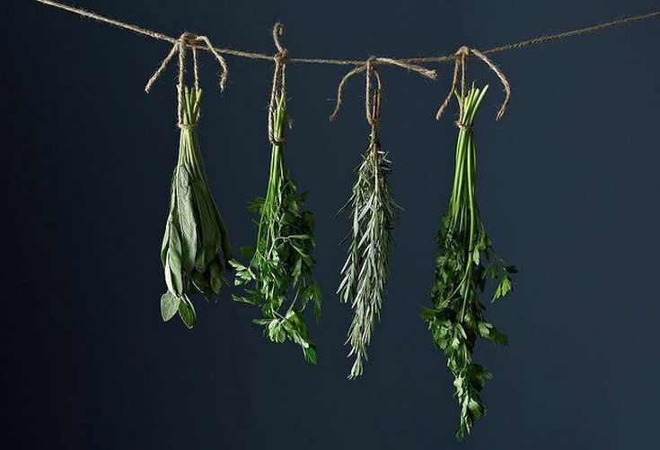 5 Links to Read Before Cooking with Fresh Herbs