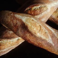Minimalist No-knead Sourdough Baguettes (2-3 days)