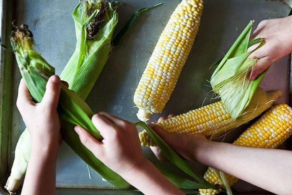 Shucking corn