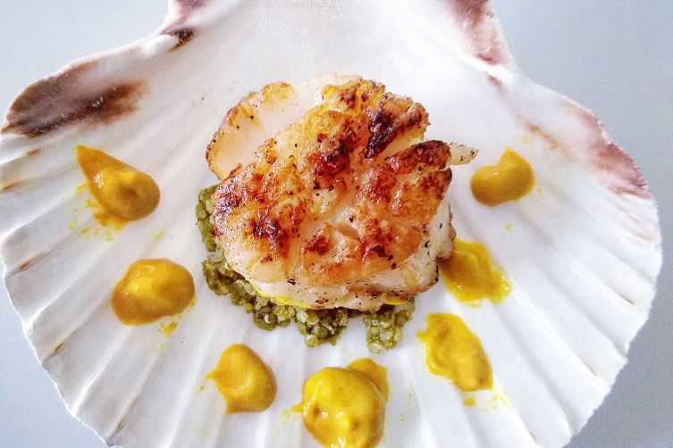 Seared scallops over pesto and quinoa paste