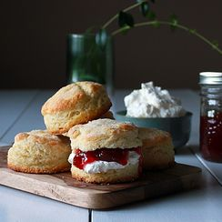 Perfect biscuits