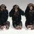 03cb6e81 5a0a 4cfa 8c2c 4bd2f6e99a83  monkeys