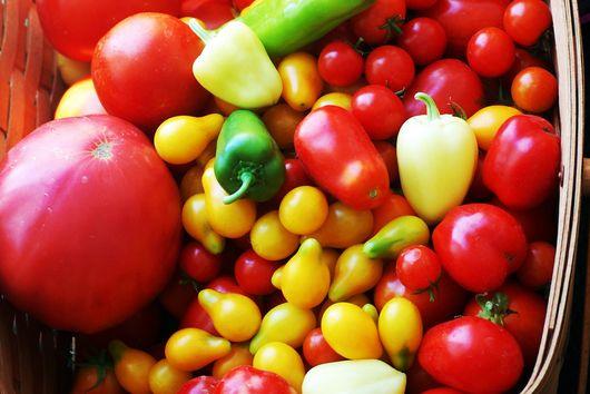 End of Summer Tomato Cruda