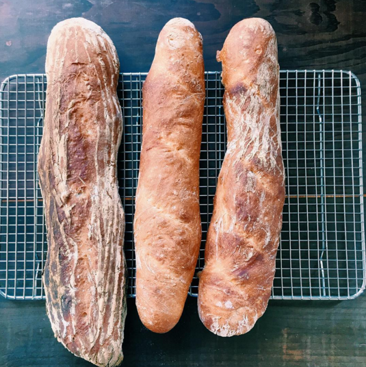 One of these baguettes rose in a brotform; the other two did not.