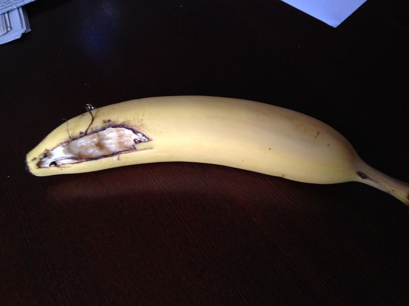 Cool Lately My Bananas Get These Holes In Them We Do Not Have Pabps2019 Chair Design Images Pabps2019Com