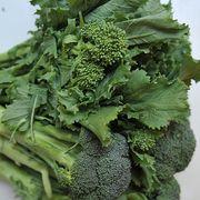 178e352f 15bb 4942 ada2 65afe57c21fc  broccoli rabe