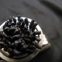 Black Garlic Tapenade