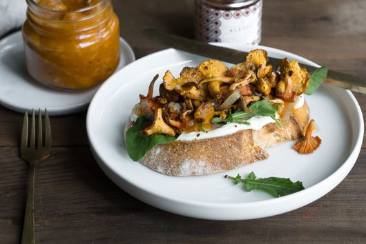 Searching for Chanterelles, Nature's Edible Gold