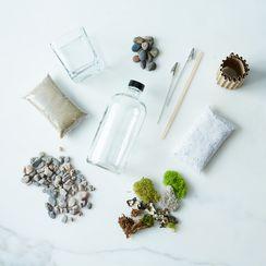 (OLD) DIY Apothecary Moss Terrarium Kit