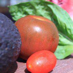 Brown Tomato, Basil and Avocado Salad