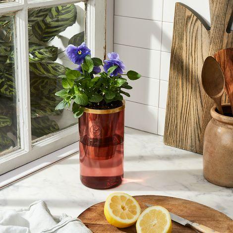 Hydroponic Garden Tumbler Kit
