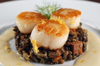 4ffc10d1 7958 4b2d b859 c372f18e3c77  scallops with fennel 1