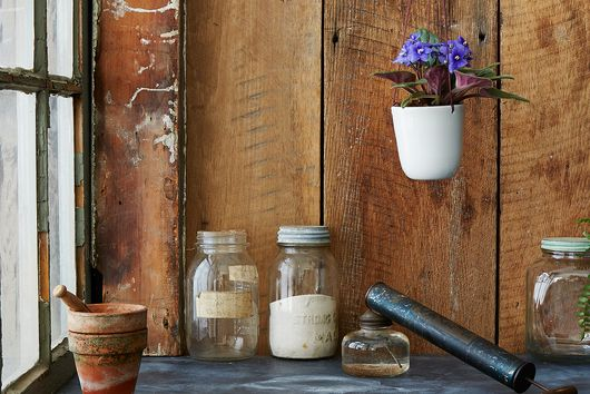 Too Many Cooks: Get Your Garden Growing