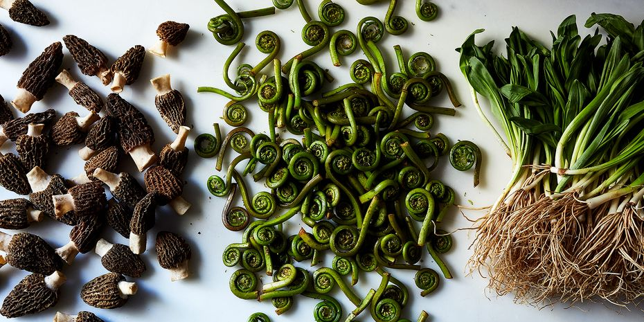 Welcome the divas: ramps, fiddleheads, and morels