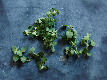 Fresh Oregano & 4 Foods to Eat it With