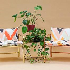 patterns by Zuzanna Konieczna