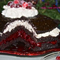 Spiced Cranberry Chocolate Cake