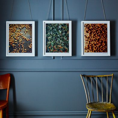 Food52 Photography Prints, Fall & Winter Series (Signed Limited Edition)