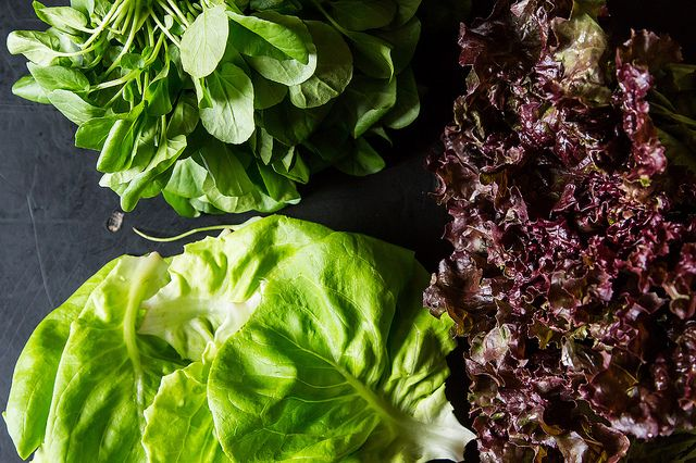 Lettuce on Food52