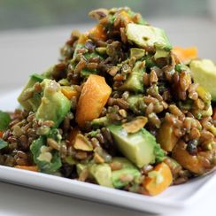 Avocado and Apricot Rye Berry Salad