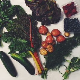 We've Got a Whole Lot of Vegetables: Now What?