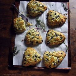Fresh blueberry white chocolate + thyme scones