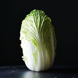 Cabbage by GKK