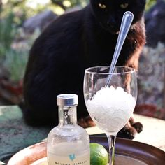 Coconut and Kaffir Lime Balsamic Granita