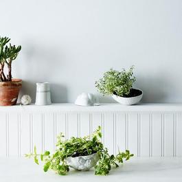 Porcelain Vegetable Bowls (Set of 3)