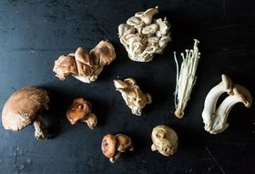 Down & Dirty: Mushrooms