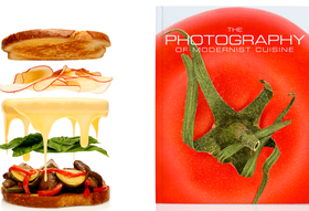 Modernist Cuisine Spills Photo Secrets