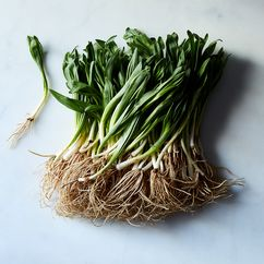 Wild Foraged Fresh Ramps (2 lbs)