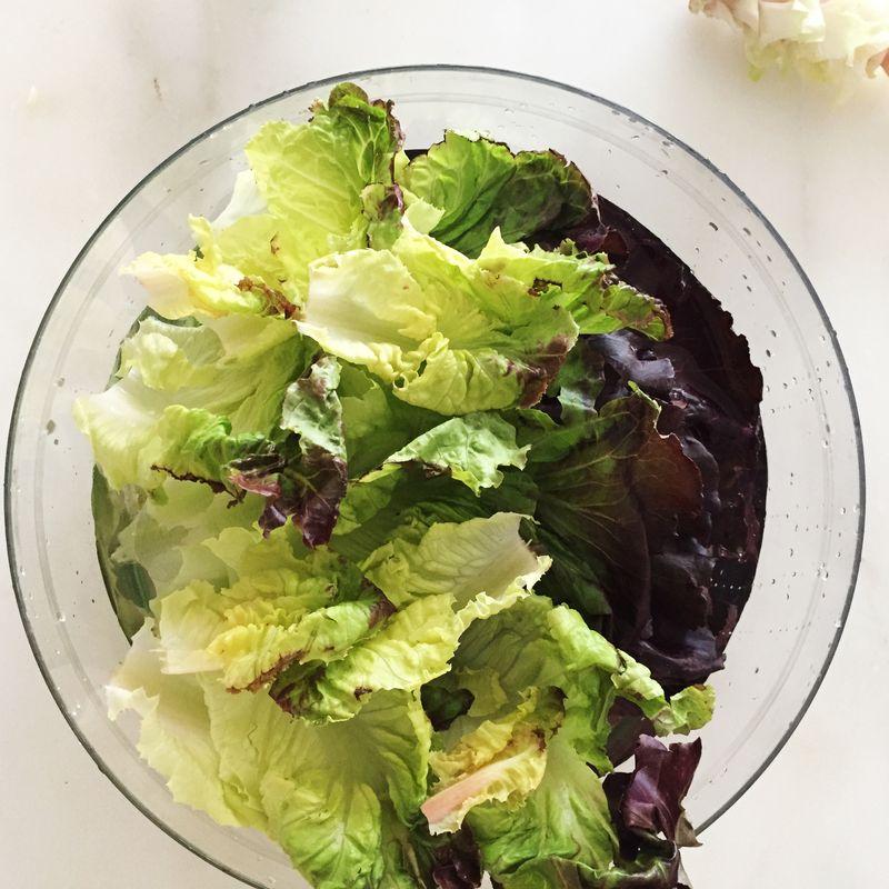 Lettuce takes a bath.