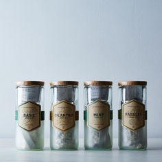 Eco Planter Herb Kit
