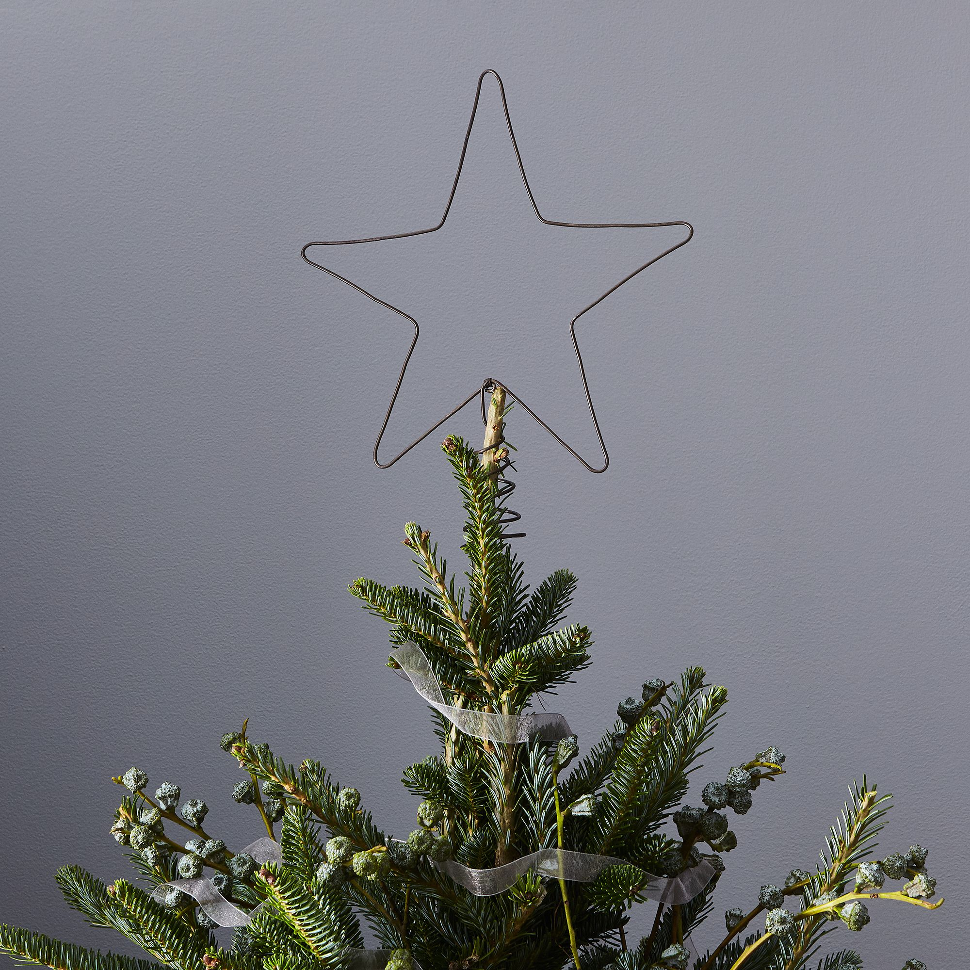 Wire Star Tree Topper on Food52