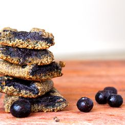 Blueberry Newtons (homemade fig newtons)