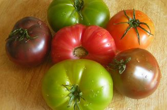 0d7677ff 7eaa 4e89 9647 9a65467f845f  pretty heirloom tomatoes w