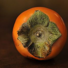 Persimmon by ML