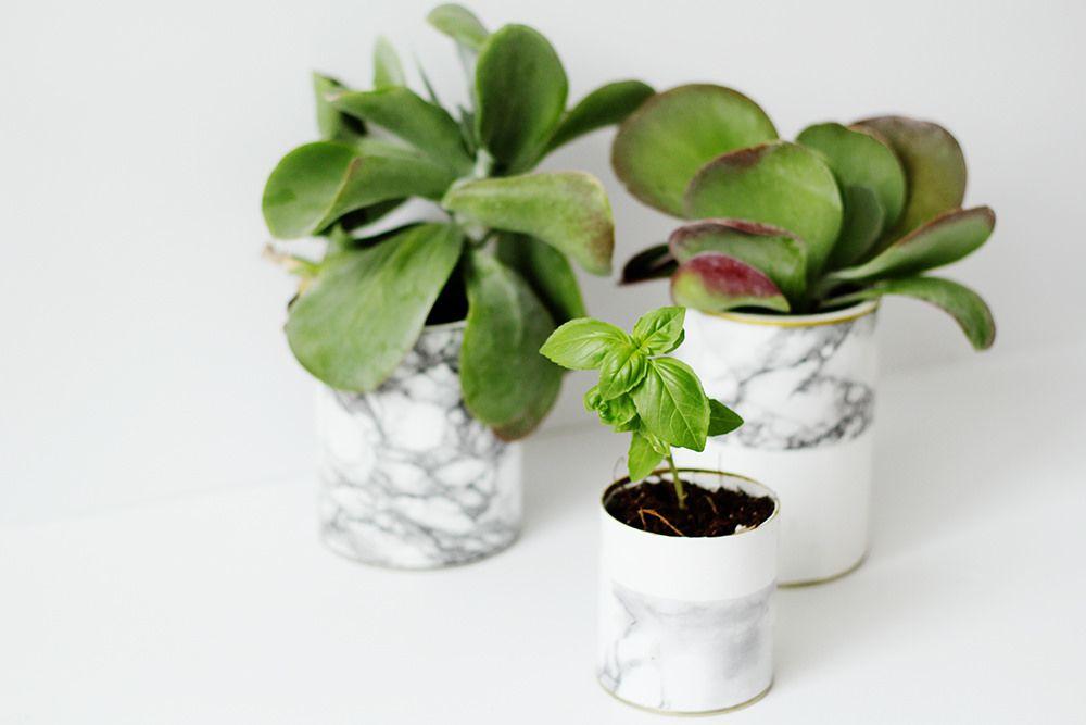 DIY Marble Planter
