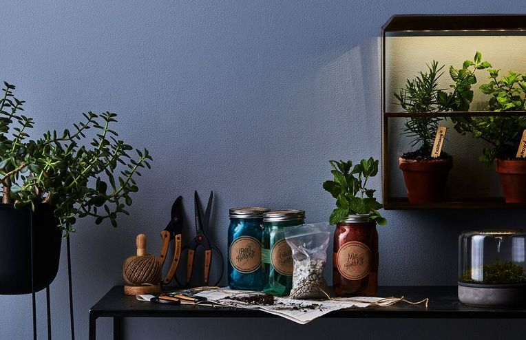 31 Perfect Gifts for Your Favorite Plant Lover